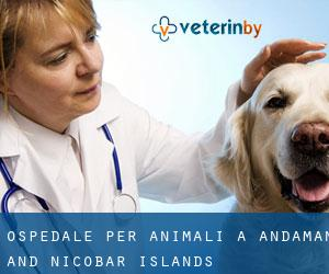 Ospedale per animali a Andaman and Nicobar Islands