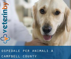 Ospedale per animali a Campbell County