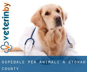 Ospedale per animali a Etowah County
