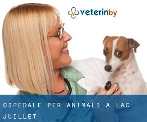 Ospedale per animali a Lac-Juillet