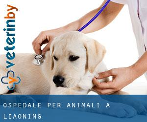 Ospedale per animali a Liaoning