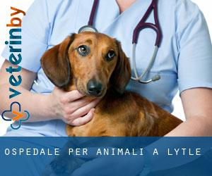 Ospedale per animali a Lytle
