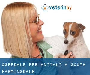 Ospedale per animali a South Farmingdale