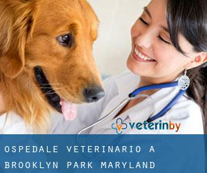 Ospedale Veterinario a Brooklyn Park (Maryland)