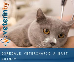 Ospedale Veterinario a East Quincy
