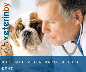 Ospedale Veterinario a Fort Kent