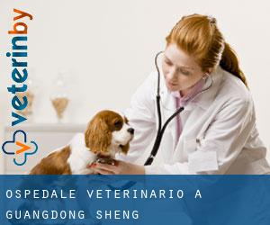 Ospedale Veterinario a Guangdong Sheng