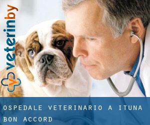 Ospedale Veterinario a Ituna Bon Accord
