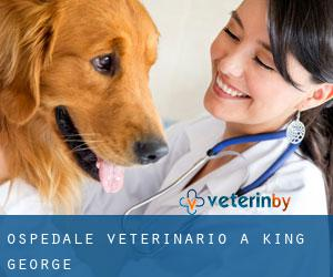 Ospedale Veterinario a King George