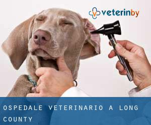Ospedale Veterinario a Long County