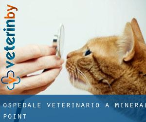 Ospedale Veterinario a Mineral Point