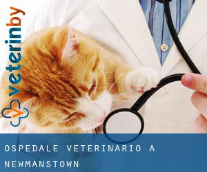 Ospedale Veterinario a Newmanstown