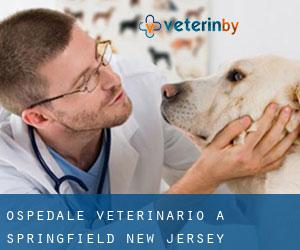 Ospedale Veterinario a Springfield (New Jersey)