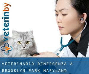Veterinario d'Emergenza a Brooklyn Park (Maryland)