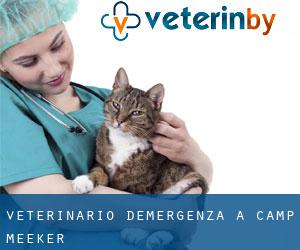 Veterinario d'Emergenza a Camp Meeker