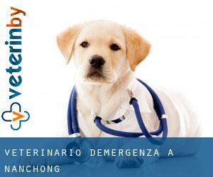 Veterinario d'Emergenza a Nanchong