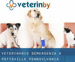 Veterinario d'Emergenza a Pottsville (Pennsylvania)