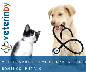 Veterinario d'Emergenza a Santo Domingo Pueblo