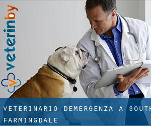 Veterinario d'Emergenza a South Farmingdale