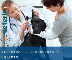 Veterinario d'Emergenza a Whitman