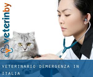 Veterinario d'Emergenza in Italia