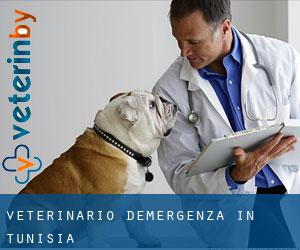 Veterinario d'Emergenza in Tunisia