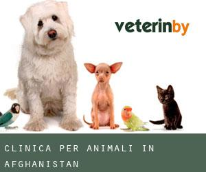 Clinica per animali in Afghanistan