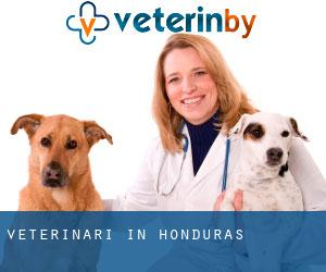 Veterinari in Honduras