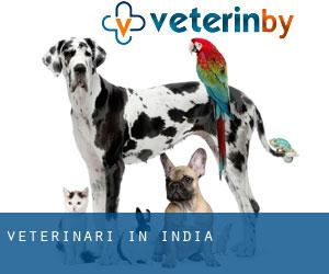 Veterinari in India