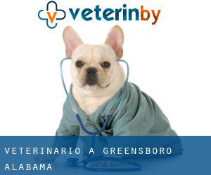 Veterinario a Greensboro (Alabama)