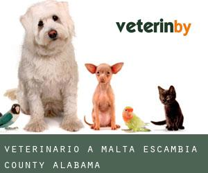 veterinario a Malta (Escambia County, Alabama)