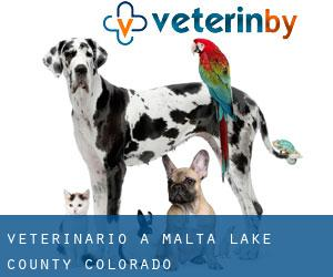 veterinario a Malta (Lake County, Colorado)