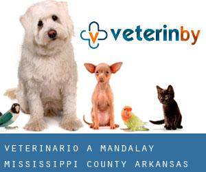 veterinario a Mandalay (Mississippi County, Arkansas)
