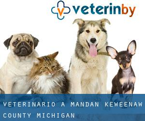 veterinario a Mandan (Keweenaw County, Michigan)