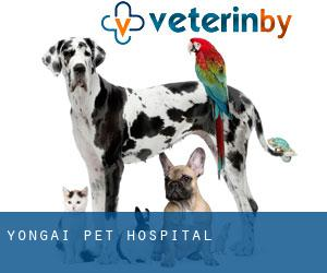 Yong'ai Pet Hospital